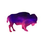 Purple Pink Buffalo Print