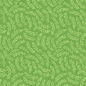 Wild Fern | Green
