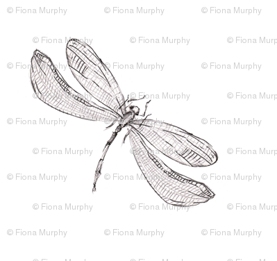 Dragonfly graphic print