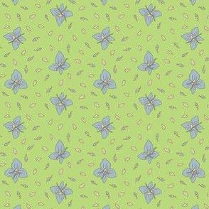 Blue Speedwell | Green