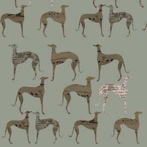 "greyhounds , "" poets and philosophers"", green, brown"