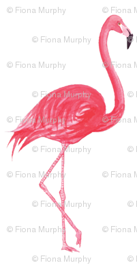 Rrrflamingo_preview