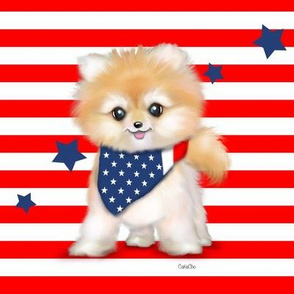 Patriotic Pomeranian Stripes L