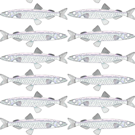 capelin outline in white fabric by combatfish on Spoonflower - custom fabric