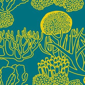 Coral (yellow on dark teal)