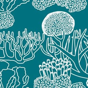 Coral (white on dark teal)