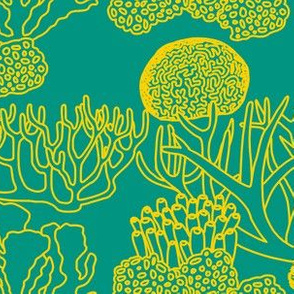 Coral (yellow on teal)