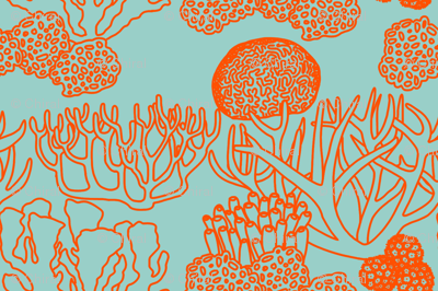 Coral (bright orange on light teal)