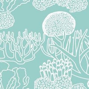 Coral (white on light teal)