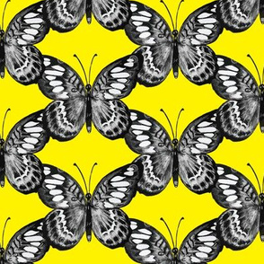 Butterfly Trellis on bright yellow
