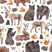 Rrforest_animals_merged_shop_thumb