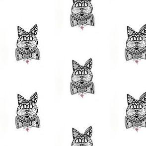 Fancy Cat Doodle