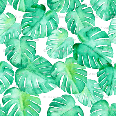 (jumbo scale) watercolor monstera leaf