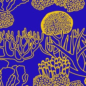 Coral (yellow on blue)