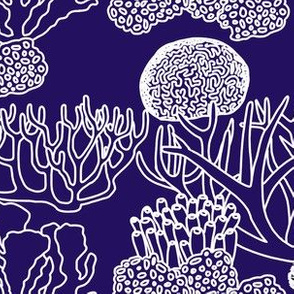 Coral (white on purple)