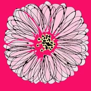 crazy daisy pink splash