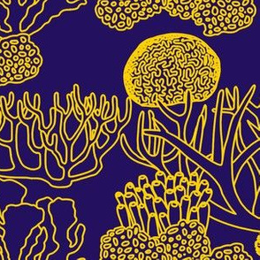 Coral (yellow on dark purple)