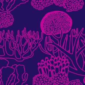 Coral (pink on dark purple)