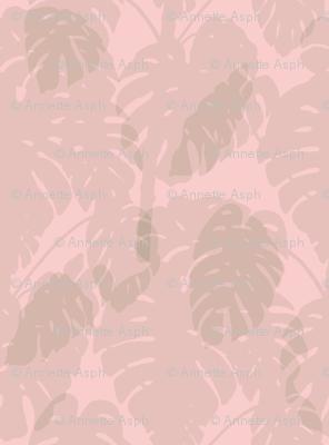 Monstera_soft pink