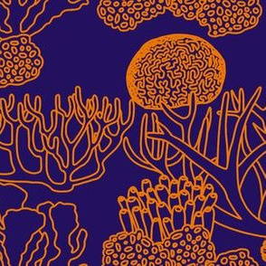 Coral (orange on purple)