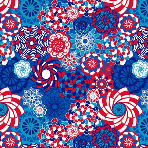 Succulents - Red White and Blue