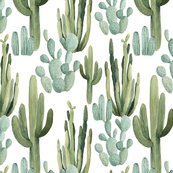 Rdesert_cactus_pattern_shop_thumb