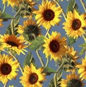 Rsunflowers_light_blue_shop_thumb