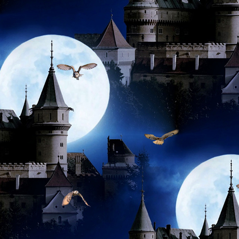castle and owls (bojnice castle/slowakia) - potter's world fabric by stofftoy on Spoonflower - custom fabric