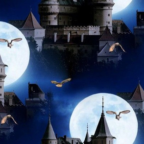 castle and owls (bojnice castle/slowakia) - potter's world