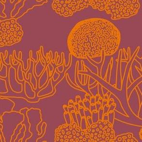 Coral (orange on dark mauve)