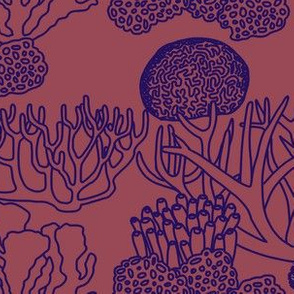 Coral (purple on dark mauve)
