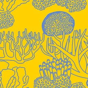 Coral (mid blue on yellow)