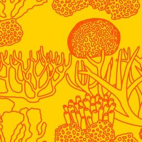 Coral (bright orange on yellow)