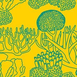 Coral (teal on yellow)
