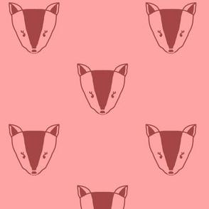 Fox Faces in Orange