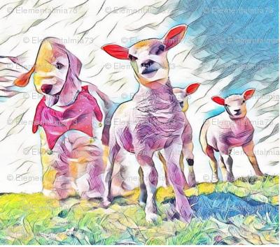 Bedlington Terrier Lambs
