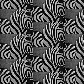 Zebra by JVB