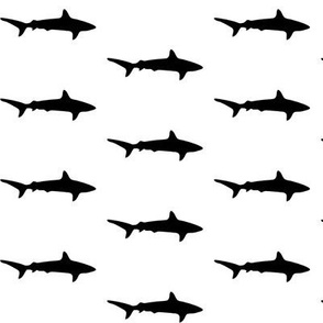 sharks of shark week Black and white
