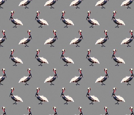 The Punctual Pelican  fabric by saint_shores on Spoonflower - custom fabric