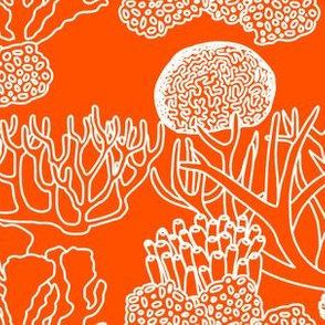 Coral (white on bright orange)