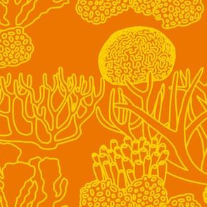 Coral (yellow on orange)