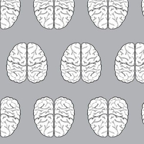 Brain Sketch | Stone