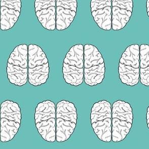 Brain Sketch | Monte Carlo
