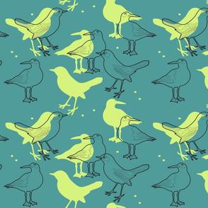 just_birds