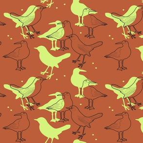 just_birds_2
