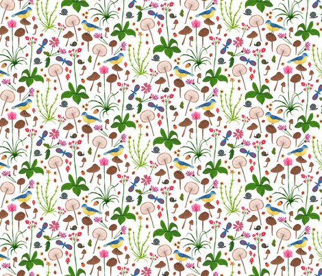 Scottish_wildflowers_shop_preview