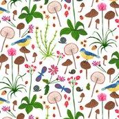 Scottish_wildflowers_shop_thumb