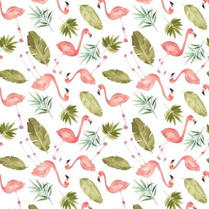 Tropical Flamingos scattered