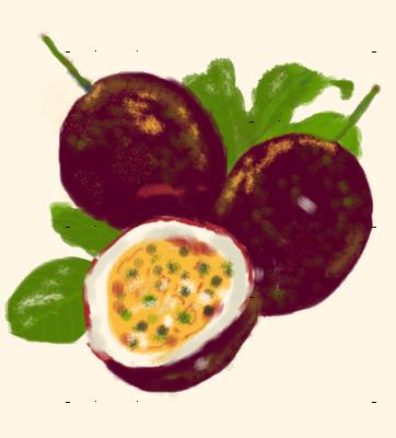 watercolor-fruits