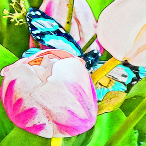 Rrbutterfly_watercolor2_shop_thumb